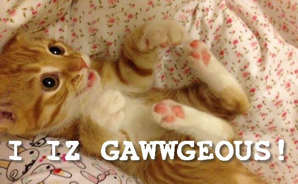 gawwgeous