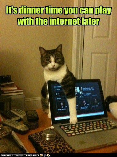 internet later lol