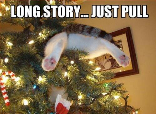 long story lol