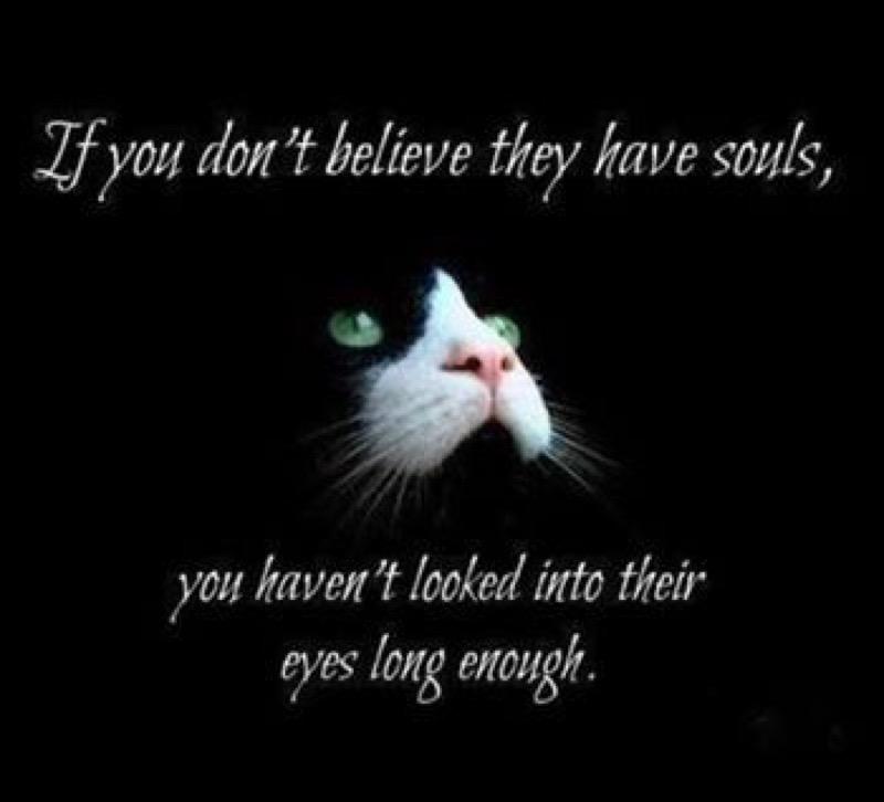 have souls