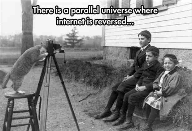parallel lol