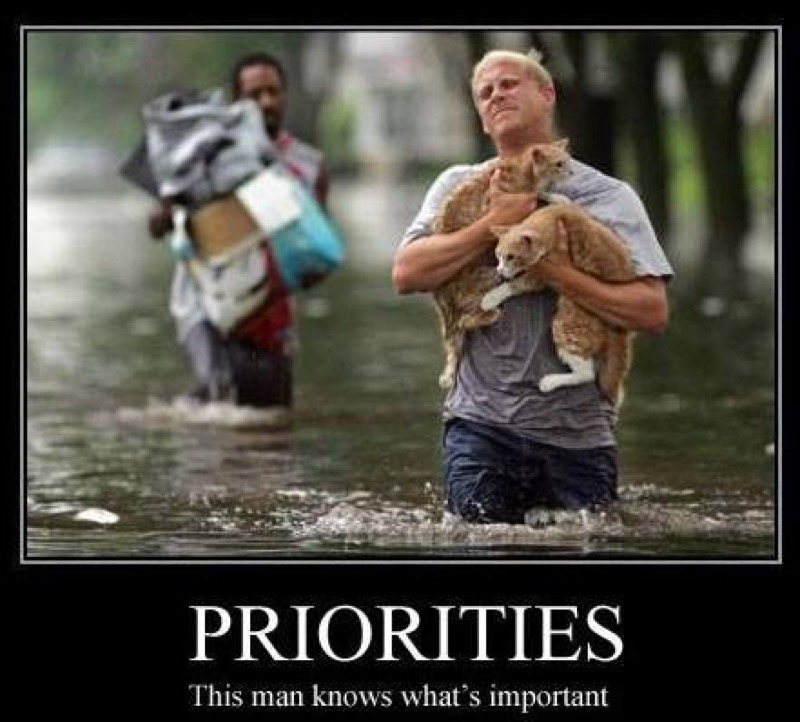 priorities lol
