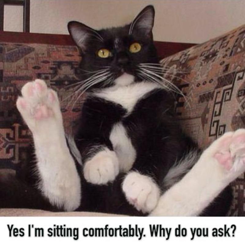 sitting lol