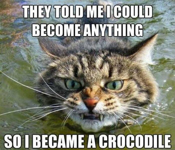 became a crocodile