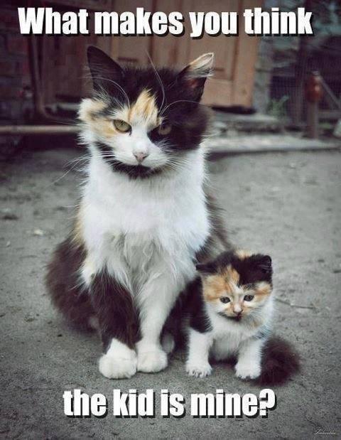 The kid is mine