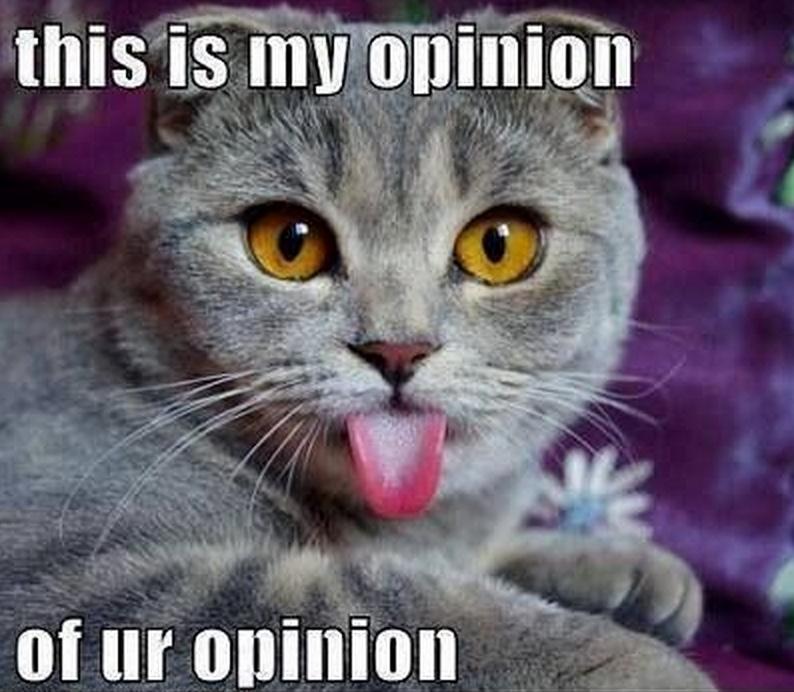opinion lol