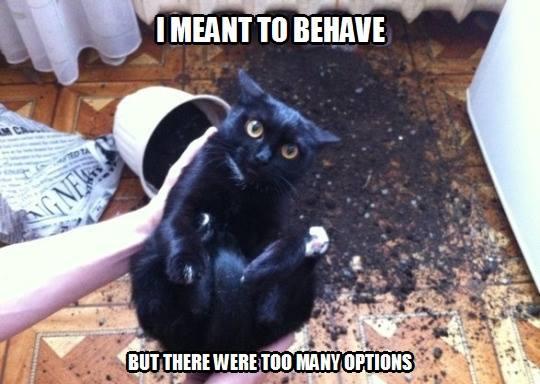 behave lol