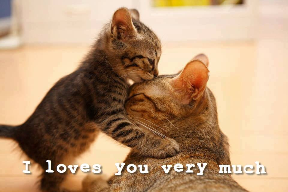i loves you