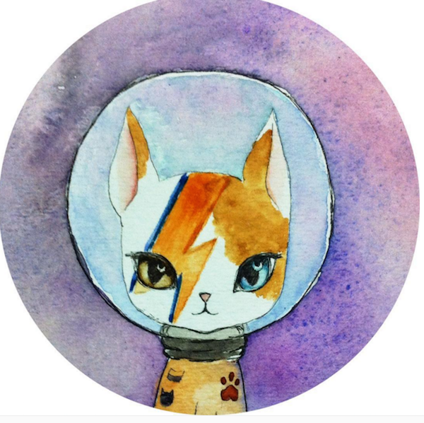 BowieCats6