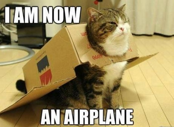 airplane maru