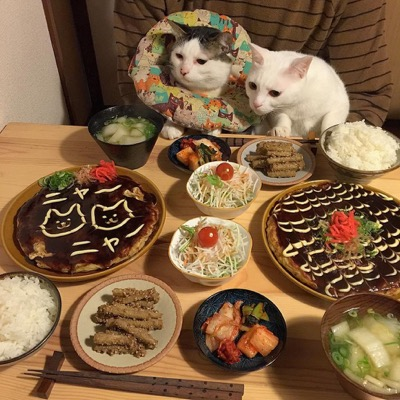food envy 10