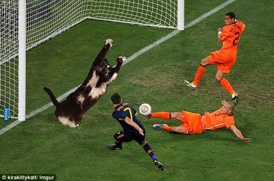 goal kitty 4