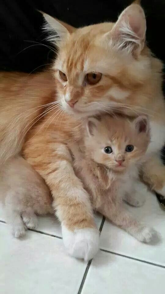 me and my mama