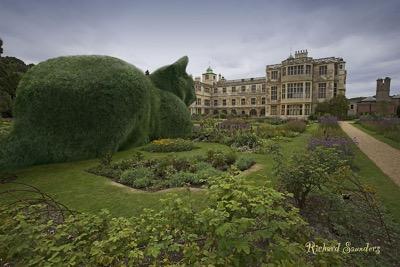 topiary 6