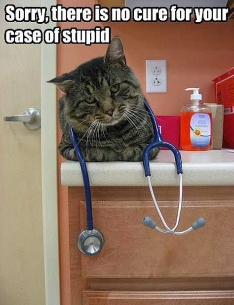case of stupid lol