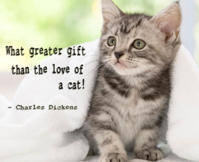 dickens quote
