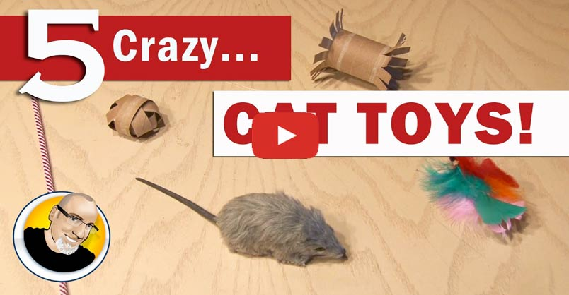 5 crazy cat toys you can make we love cats and kittens for Kitten toys you can make