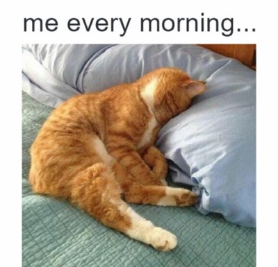me-every-morning-lol