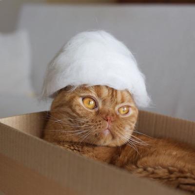 hats-11