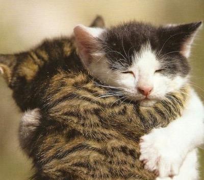 call a hug