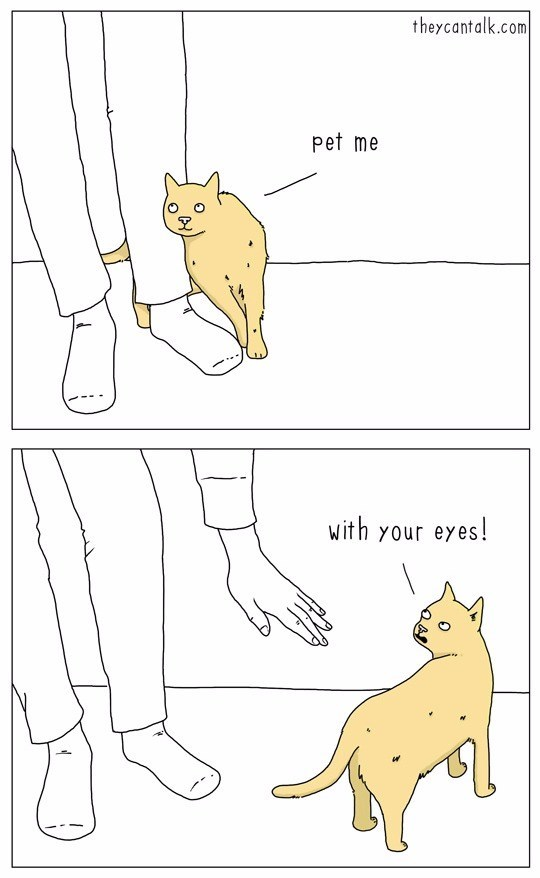 How Cat Talks