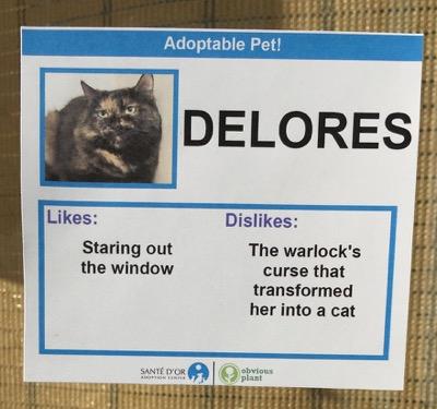 cat cards 5