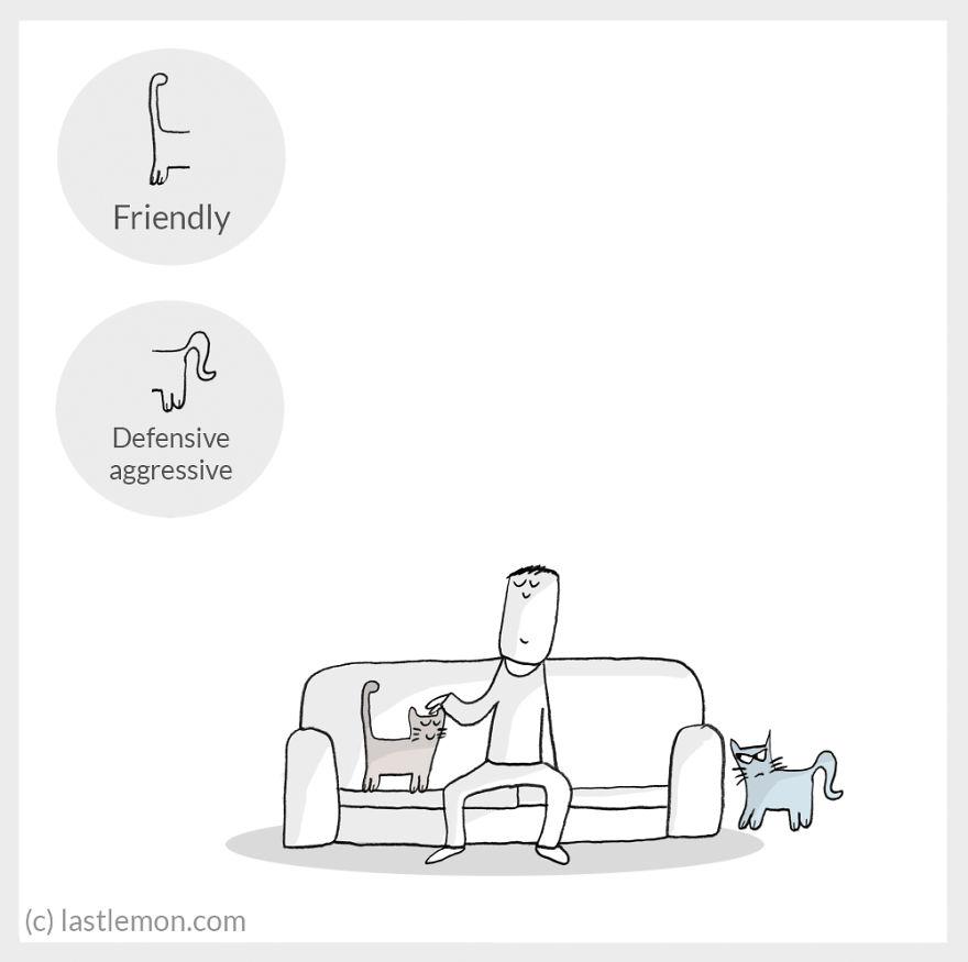 cat moods 11