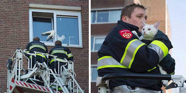 firefighters 3