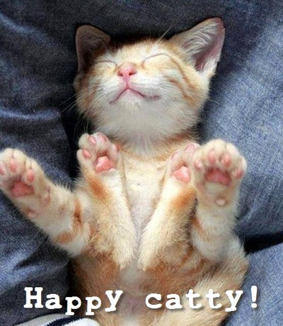 happy catty
