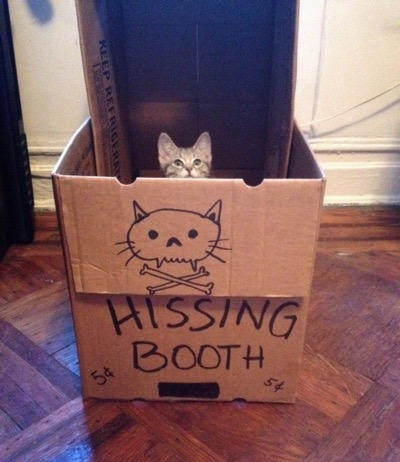 I've seen a kissing booth