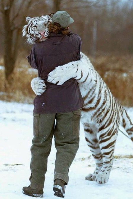 Now that's what I call a hug