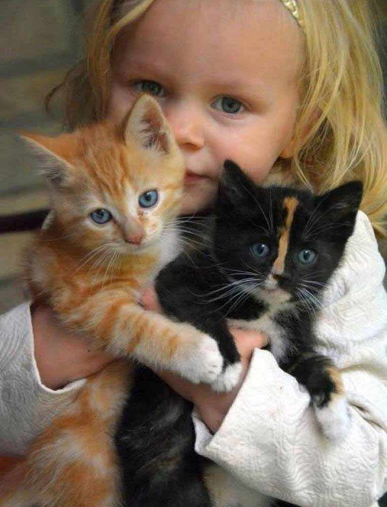 Three-little-cuties