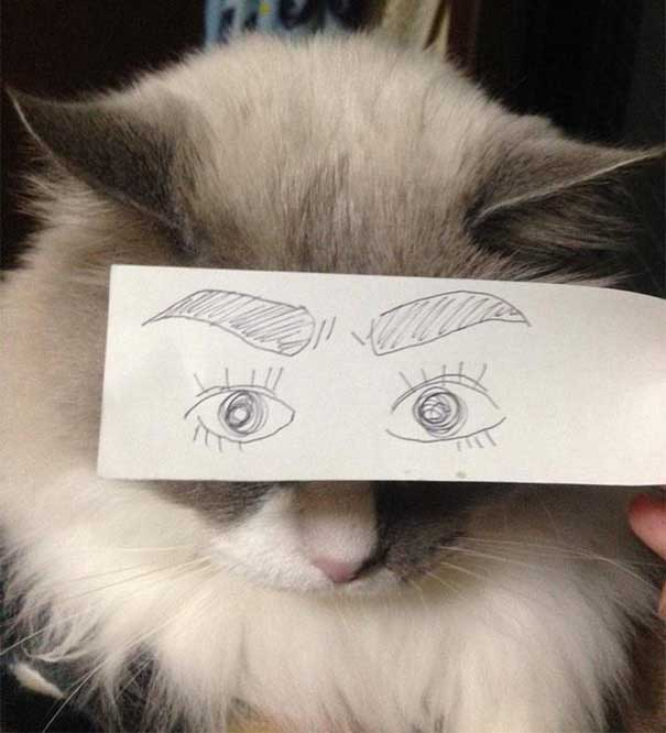 funny-eyes-14