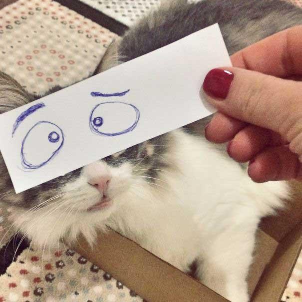 funny-eyes-16