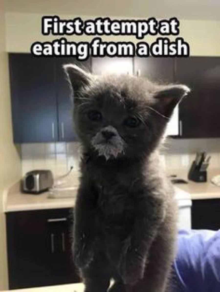What-a-cutie!