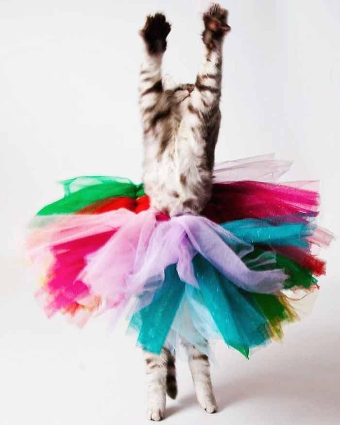 dancing-9
