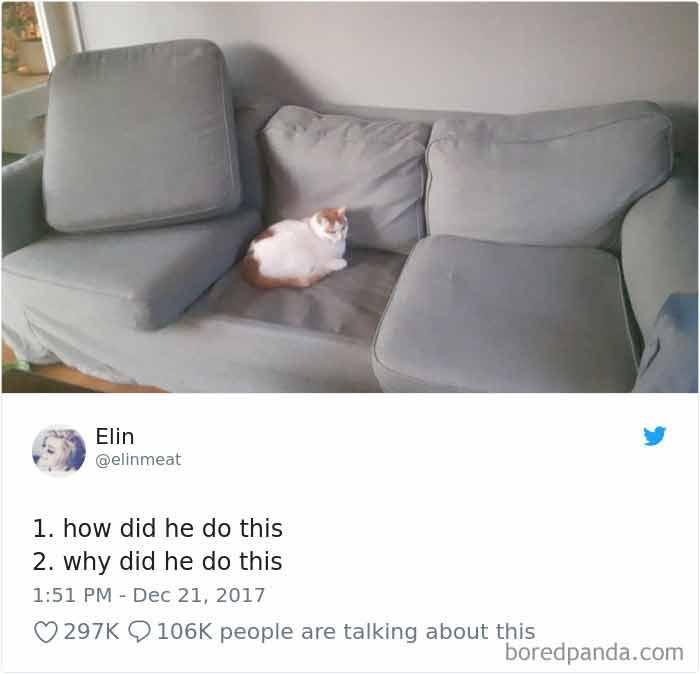 tweets19-16