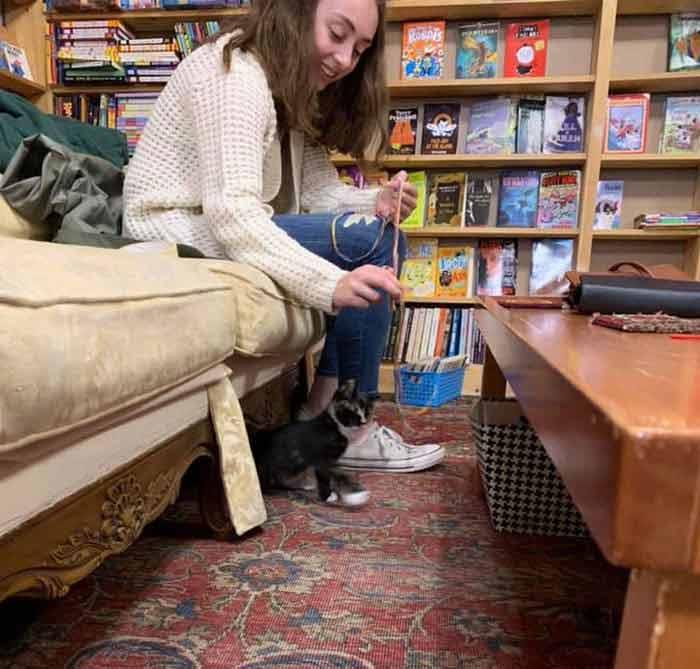 bookstore-7