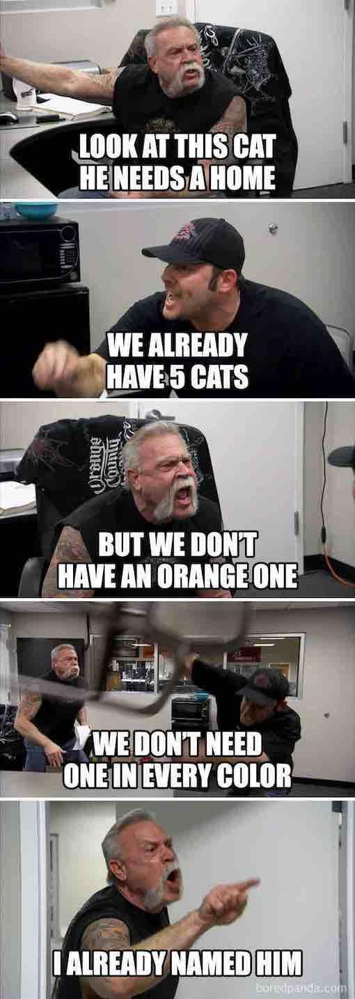 memes21-8