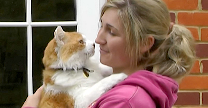 Rescue Cat Finally Gets A Home and Repays His Mom With Hugs Every Day